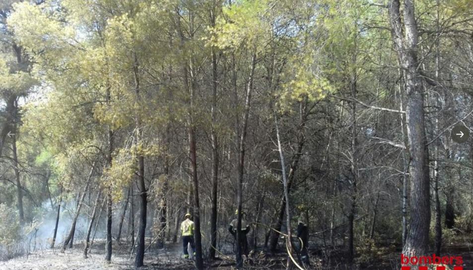 Imatge d'efectius de Bombers treballant a la zona afectada.
