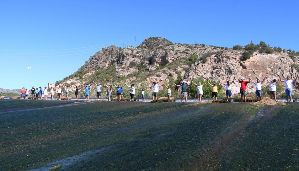 Imatge dels participants en la cadena humana feta a l'Assut de l'Ebre.