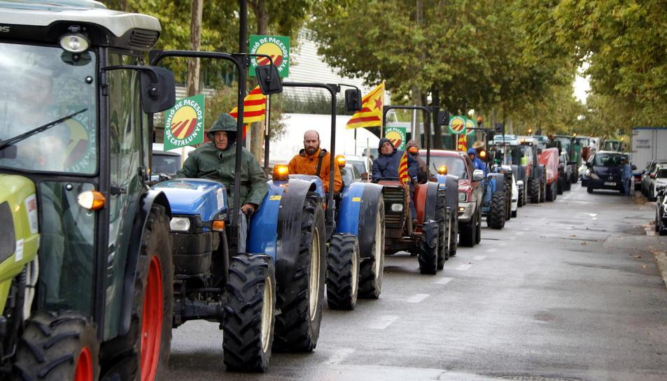 Una filera de tractors al polígon Agroreus durant la protesta dels pagesos de la fruita seca.