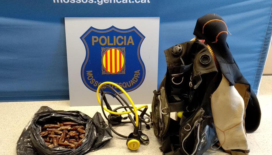 Els agents van intervenir 3,8 quilos de dàtil de mar.