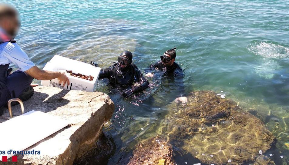 Les dues persones, que portaven un equip d'immersió, van ser enxampades 'in fraganti'.