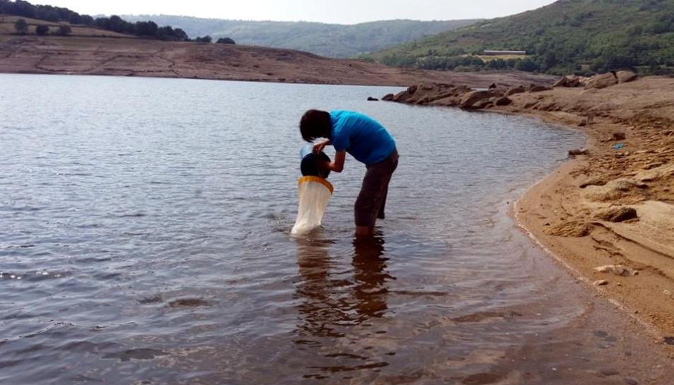 Pla general d'un tècnic de la CHE prenen una mostra en superfície en una pantà de la conca de l'Ebre.