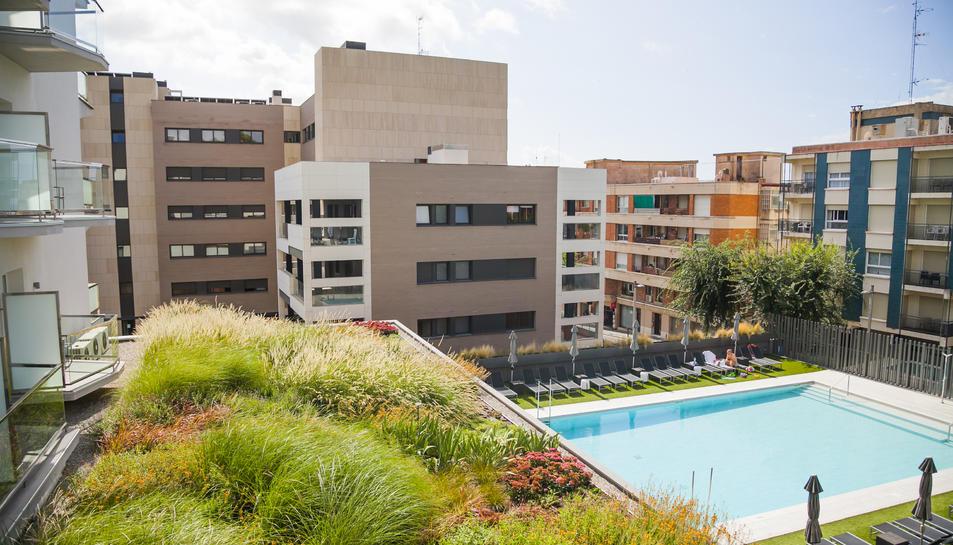 Aspecte que ofereix el jardí, vist des d'una de les habitacions de l'establiment hoteler.