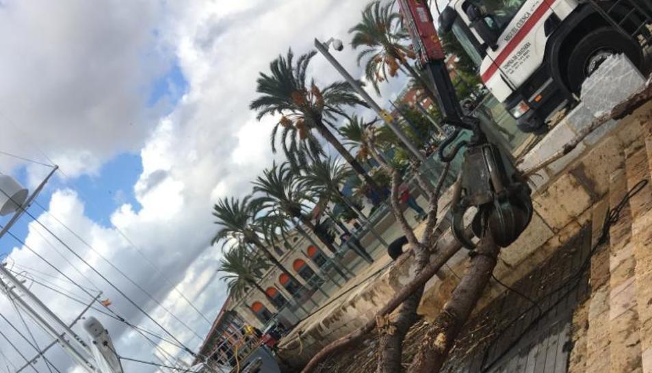 El Serrallo después del temporal (I)