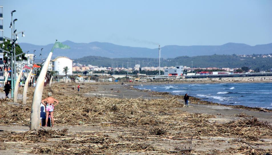 Panoràmica de la platja de la Pineda, al municipi de Vila-seca (Tarragonès), coberta de canyes arrossegades pel temporal. Imatge del 25 d'octubre del 2019