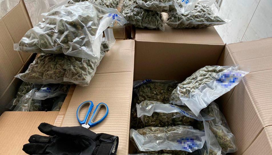 La droga tindria un valor d'uns 420.000 euros al mercat.