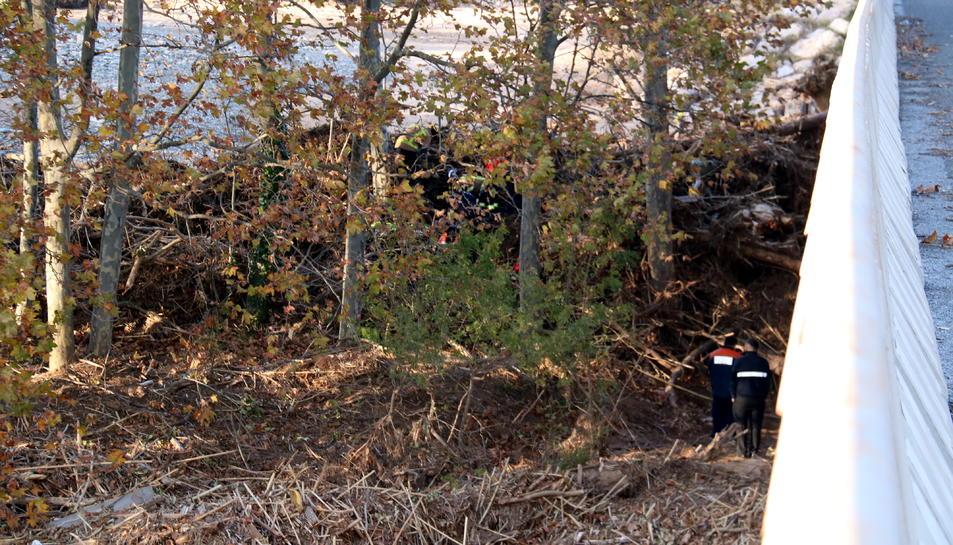 Un grup de Bombers treballant entre els arbres, a la llera del riu Francolí, per retirar les despulles localitzades, sota el pont de l'N-240 a Montblanc.