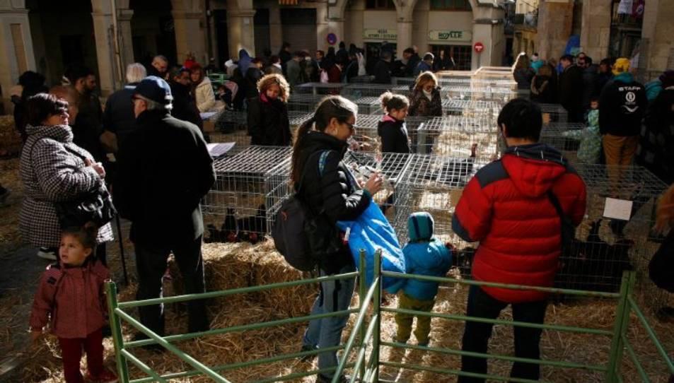 Imatge d'una edició passada del Mercat de Nadal de Valls