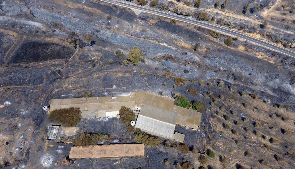 Imatge aèria captada amb dron de l'incendi de la Ribera d'Ebre on es pot veure una granja de bestiar afectada pel foc