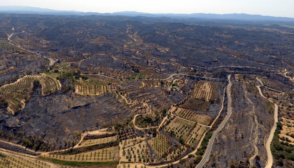 Imatge aèria dels danys causats per l'incendi de la Ribera d'Ebre