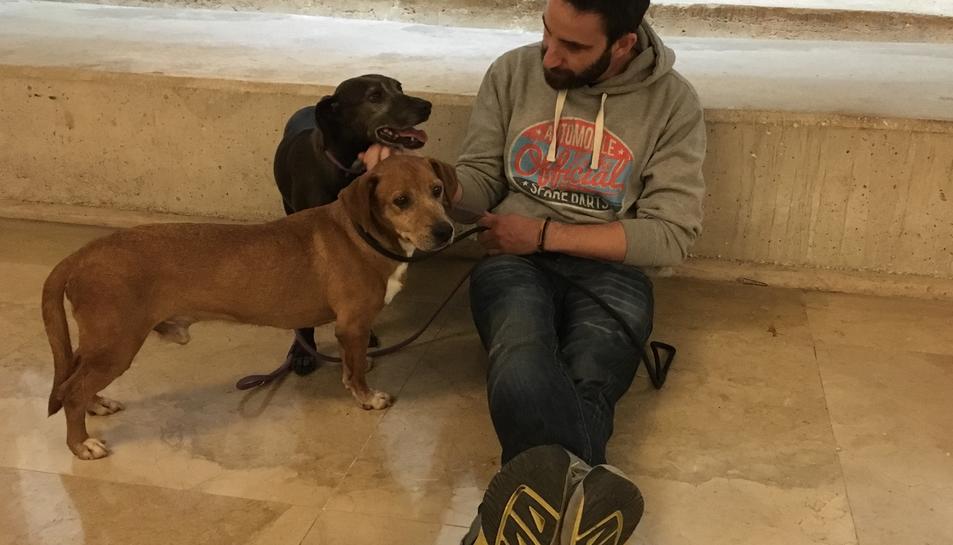 Dani Rovira promociona l'adopció d'animals a Tarragona