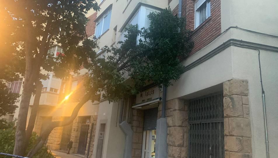 Imatge de l'arbre caigut a Reus
