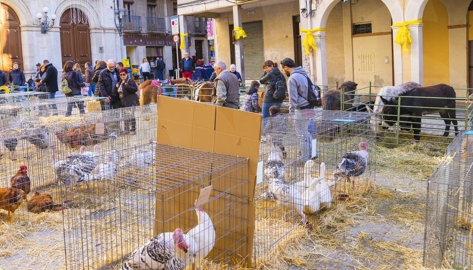 Plaça on es mostraven les gàbies amb les aus.