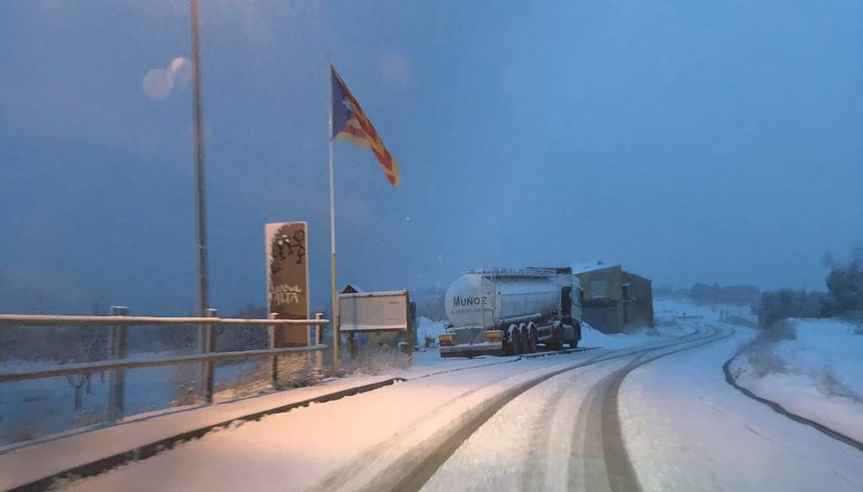 Imatge d'Arnes nevat.