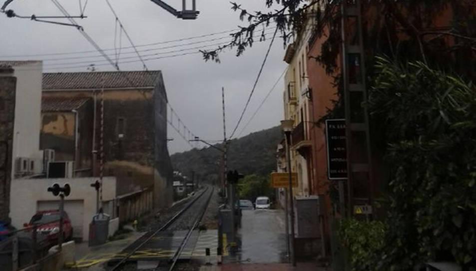 Un arbre ha caigut sobre de la catenària al pas a nivell de Roda de Barà.