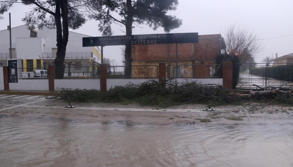 Pla general de l'entrada de les instal·lacions esportives de Deltebre, amb destrosses a causa del temporal Gloria.