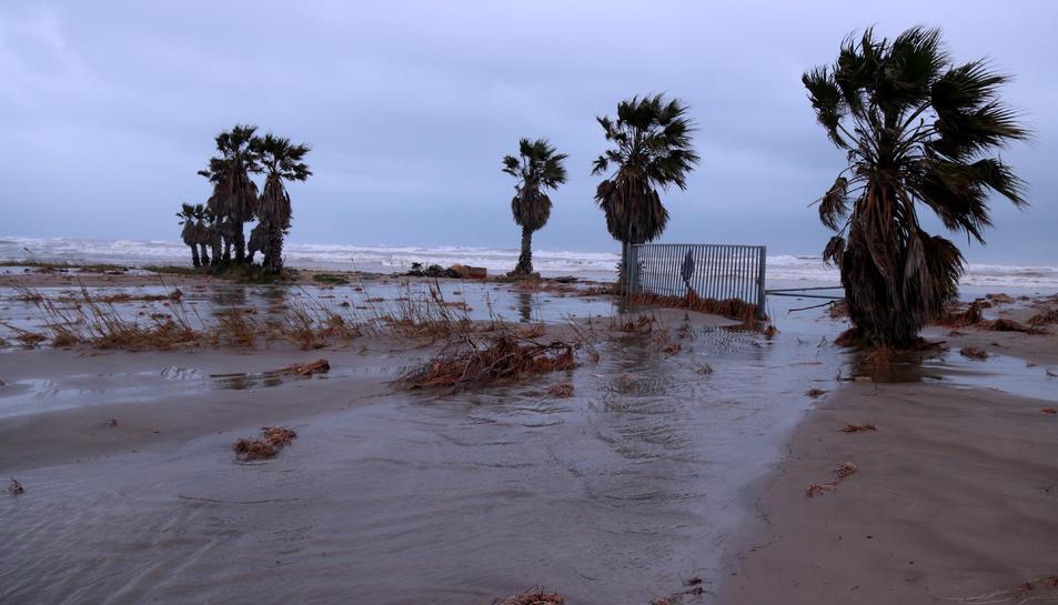Aigua del mar entrant per l'accés a una finca pròxima a la bassa de l'Arena, a la costa del terme municipal de Deltebre.