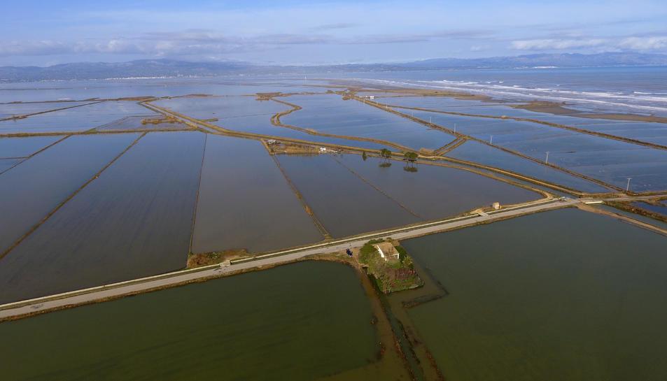 Pla aeri d'arrossars inundats amb aigua del mar a la zona de la Marquesa, al Delta de l'Ebre.