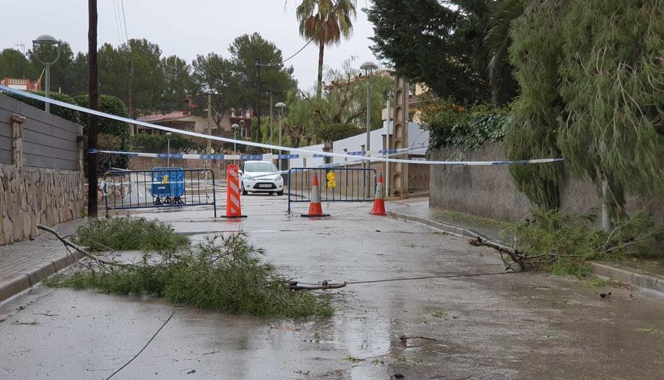 La Guàrdia urbana va tallar el carrer.