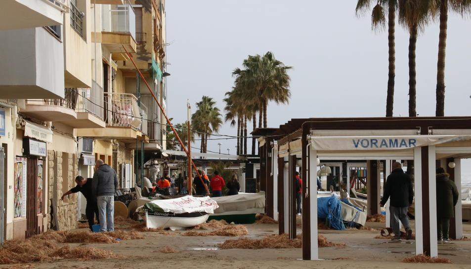 Bruticia visible al passeig marítim de Torredembarra l'endemà del temporal Gloria.