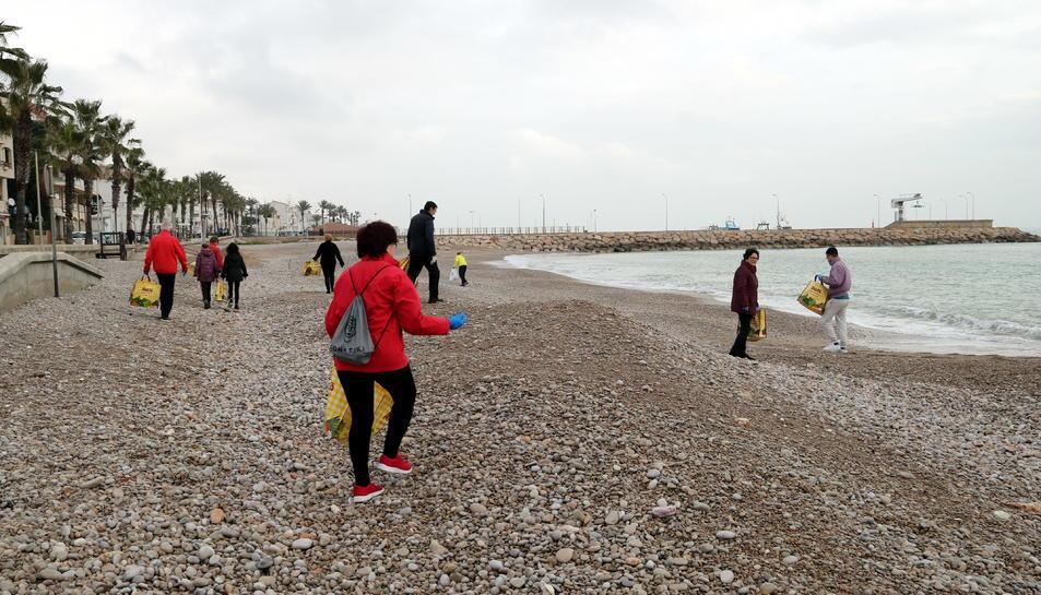 Els voluntaris que han participat en la neteja de les platges de les Cases d'Alcanar desp´res del temporal.