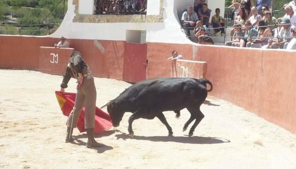 Pla general de l'actuació d'un torero durant un dels espectacles taurins que se celebrarien il·legalment a Alfara.