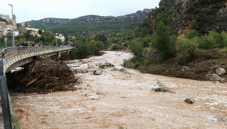 El riu Francolí, al seu pas per La Riba, el passat 23 d'octubre.