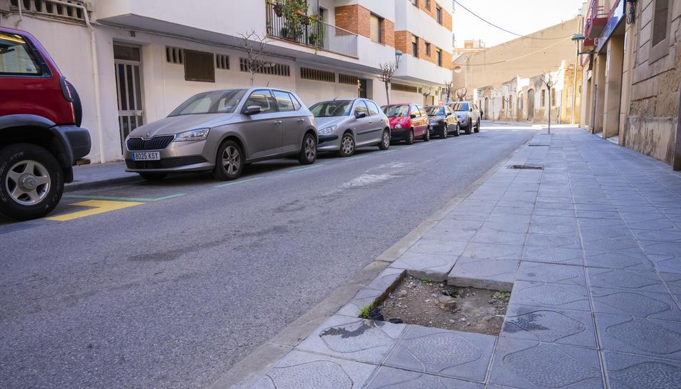 Un sector del carrer Sant Miquel, amb molta presència d'escocells a la vorera.