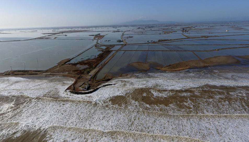 Pla aeri del mar penetrant als arrossars a la zona de la Marquesa, al delta de l'Ebre.