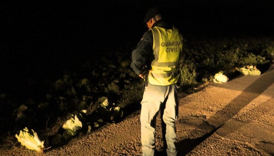 Imatge de la troballa dels agents de la Guàrdia Civil.