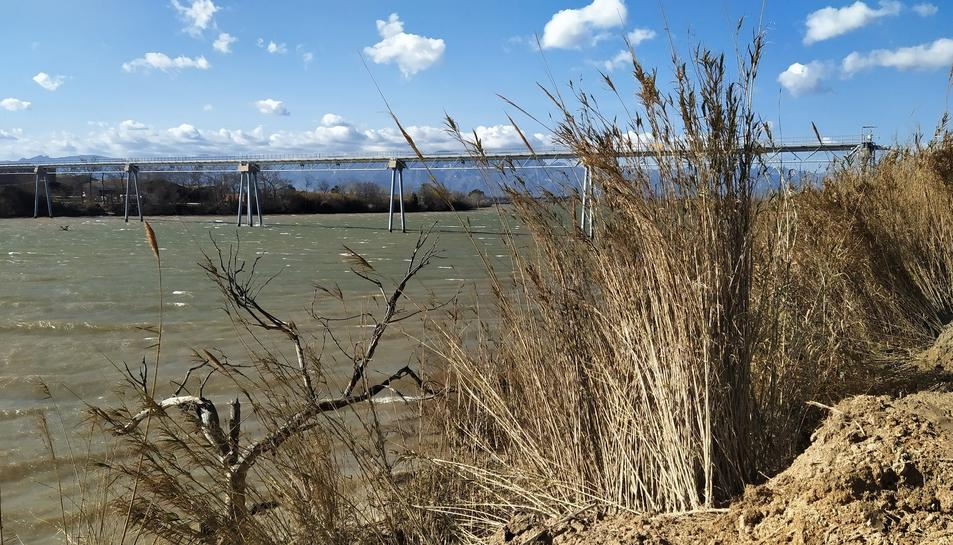 El riu Ebre al seu pas pel terme de Campredó.