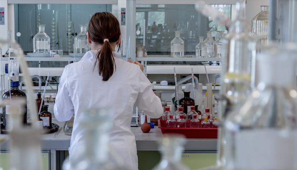 Les investigacions permtrean avançar en la diagnosi i el tractament de diverses malalties.