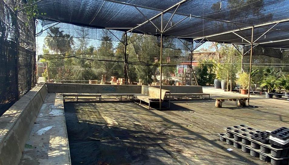 L'estoc de plantes de Vivers Barri destinades al MWC es va vendre en menys de dues hores
