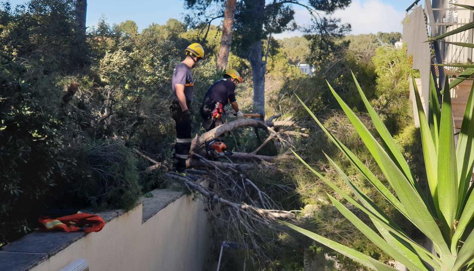 Una actuació dels voluntaris de Protecció Civil de Tarragona.