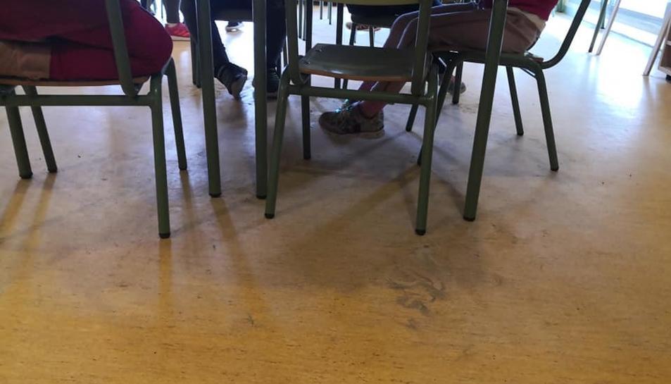 El terra d'alguns espais de l'Escola Salou presenta brutícia, segons denuncien les famílies.