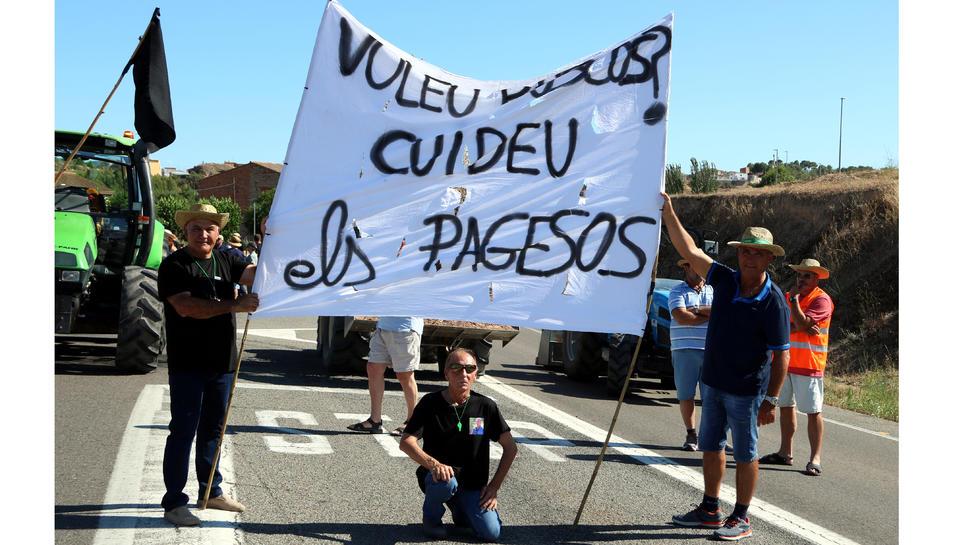 Pla obert de manifestants participant en el tall de carretera de la C-12 a Flix.