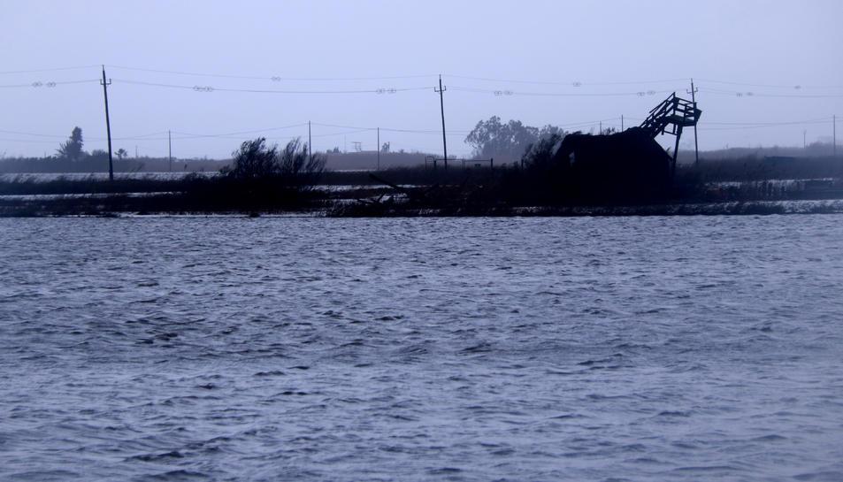 Pla general d'arrossars inundats per aigua de la mar a la zona de la Marquesa, a Deltebre.