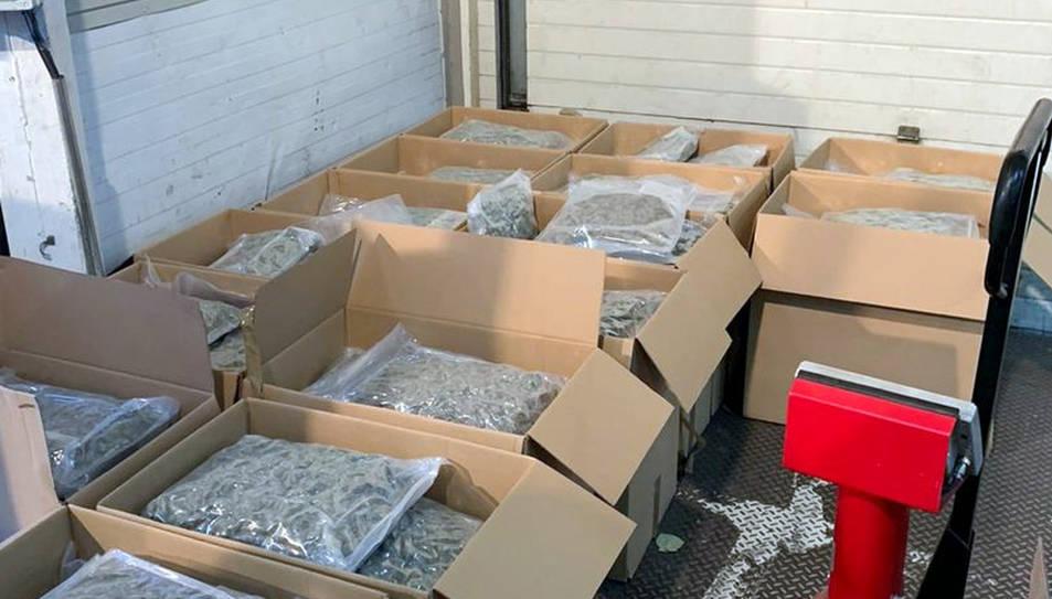 La droga, repartida en 21 paquets, estava oculta entre la mercaderia del tràiler i tenia un valor d'1,5 MEUR al mercat negre.