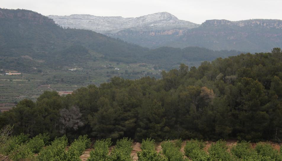 La serralada Prelitoral, enfarinada vista des d'Alforja.