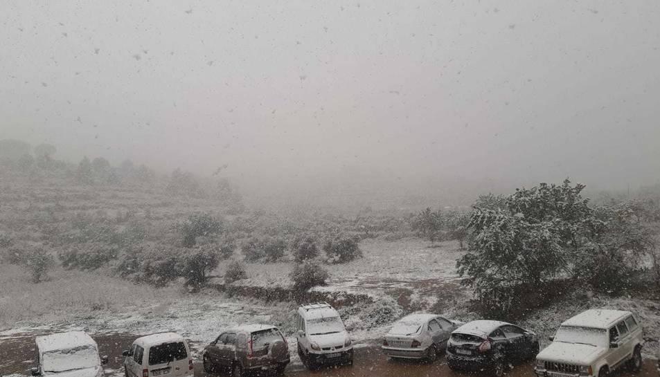 Cornudella ha quedat coberta per una fina capa de neu.