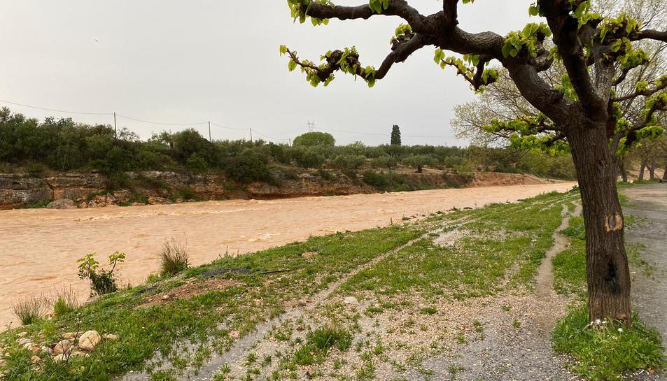 Pla general del barranc de la Galera amb aigua baixant al seu pas pel municipi de Masdenverge.
