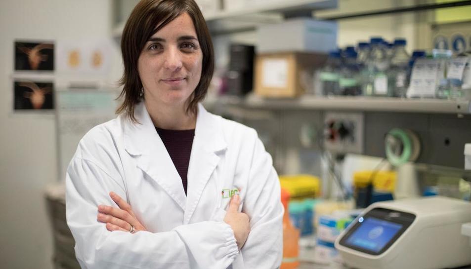 La professora d'Investigació ICREA Núria Montserrat.
