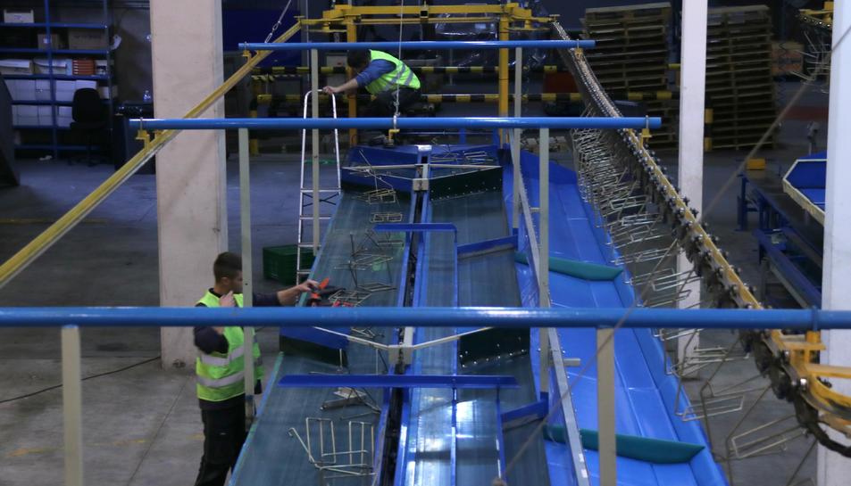 Operaris de Soldebre instal·lant una quarta línia de confecció manual al magatzem de cítrics per garantir un espai de dos metres entre treballadors.