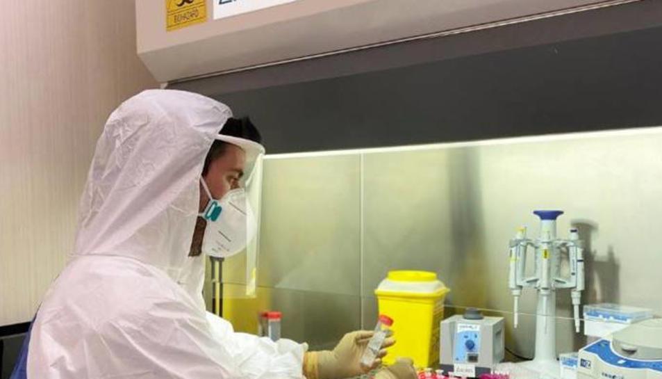 Imatge d'una investigadora amb el nou test PCR.