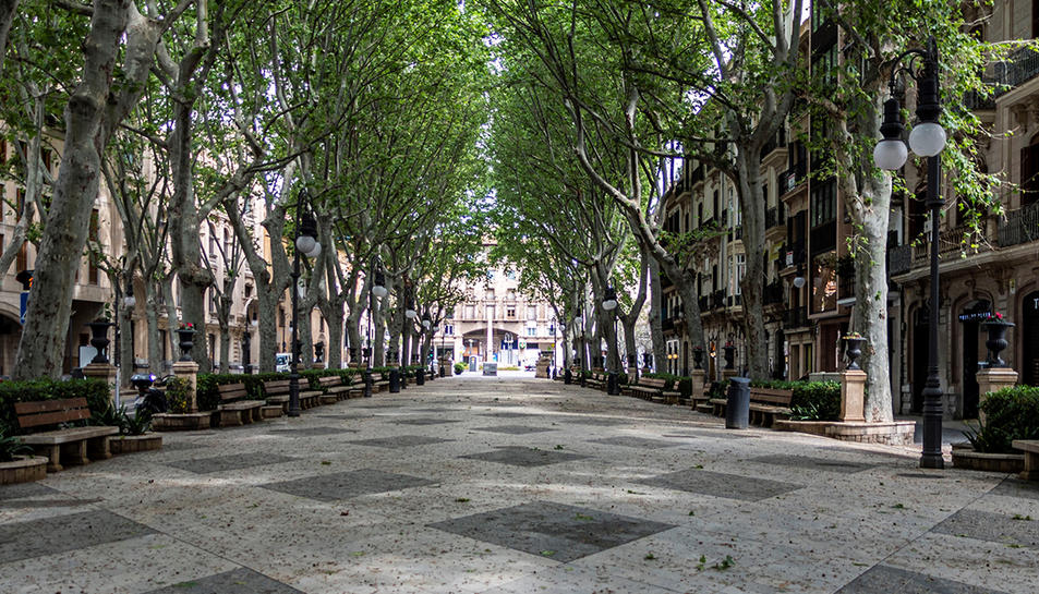 Imatge d'un passeig completament buit de gent.