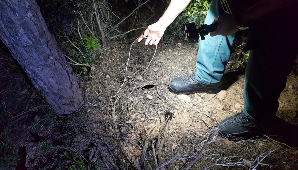 Un agent del Seprona de la Guàrdia Civil mostrant un dels llaços localitzats al Pinell de Brai.