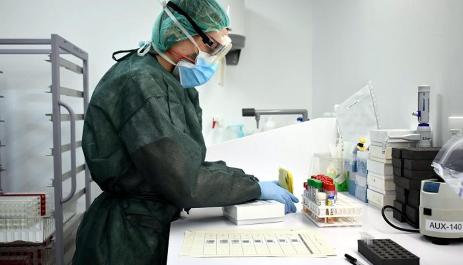 Anàlisi de proves de PCR per detectar la presència del coronavirus a la seu del Laboratori Clinic de l'ICS a Girona.