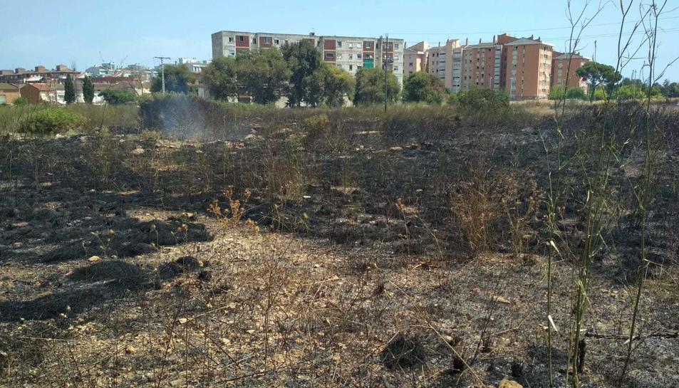 Imatge de la zona cremada.