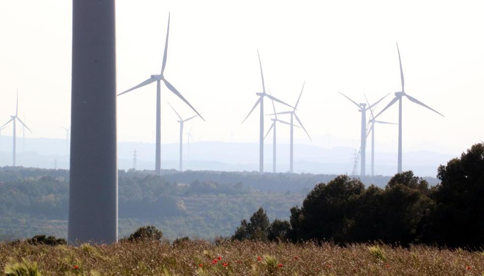 Pla general d'alguns dels aerogeneradors instal·lats a l'altiplà de la Terra Alta.