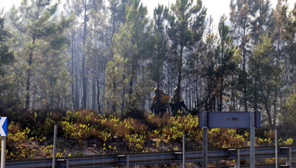 Zona afectada per l'incendi forestal a Caldes de Malavella.